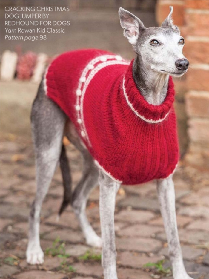 Cracking Christmas Dog Jumper by Redhound For Dogs