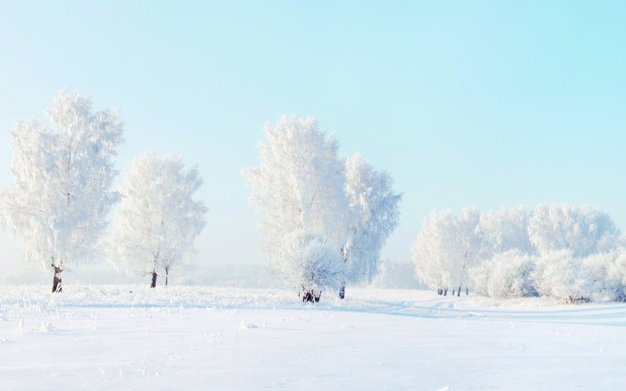 White winter snow